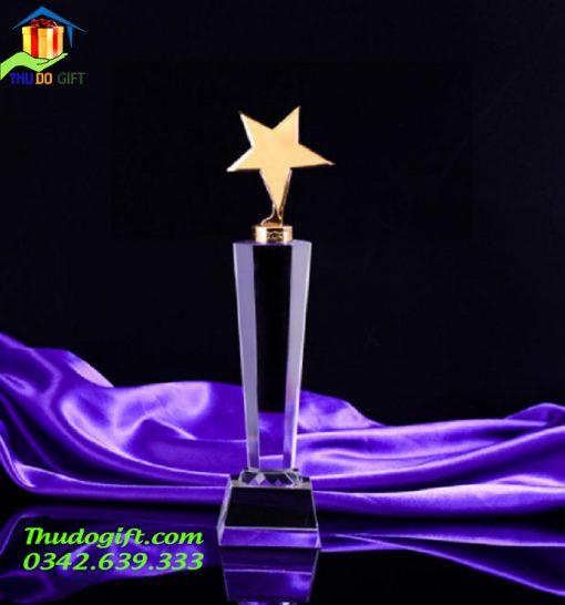 Cúp Vinh Danh Thủ Đô - CVT06
