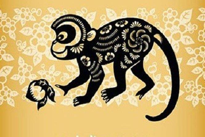 Tuổi thân đại diện cho con khỉ