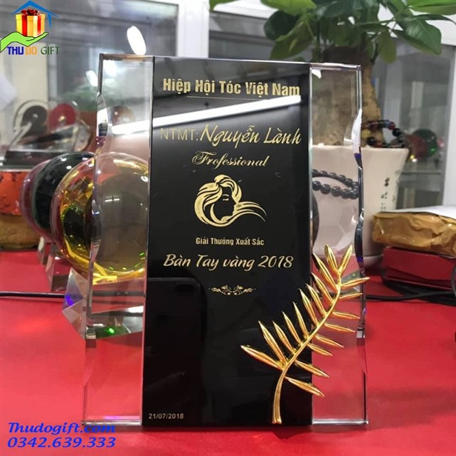 Biểu trưng pa lê cho hiệp hội tóc Việt Nam