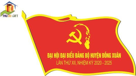 Huy hiệu lá cờ Đảng bộ huyện Đồng Xuân