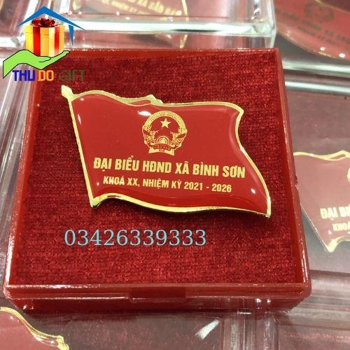 Mẫu phù hiệu đại biểu HĐND xã Bình Sơn